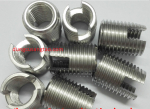 Ốc chèn rãnh vít (self-tapping screw)